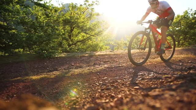 cyclist racing in woods - evento ciclistico video stock e b–roll