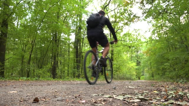 a cyclist rides down a path through a forest - rear view from ground - percorso per bicicletta video stock e b–roll