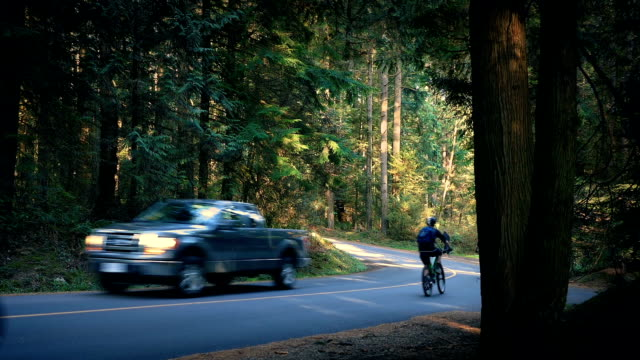Cyclists Pass Car On Forest Road video