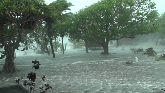 cyclone storm surge - climate change video stock e b–roll