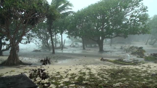Cyclone storm surge video