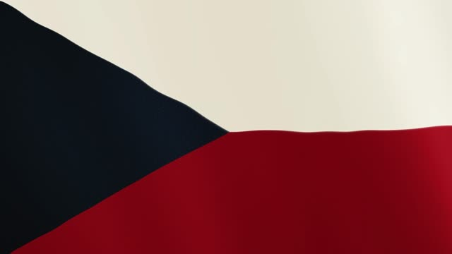 Czech Republic flag waving animation. Full Screen. Symbol of the country video