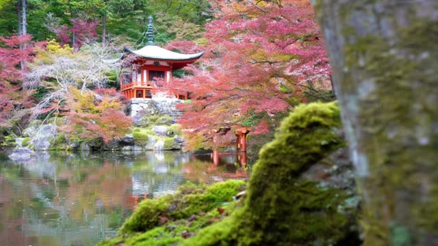 daigoji temple in kyoto city japan - tempio video stock e b–roll