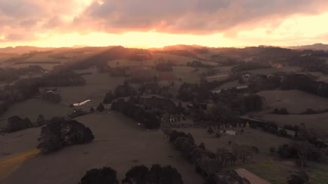 Dairy cattle farmland aerial agriculture rural country Australia video