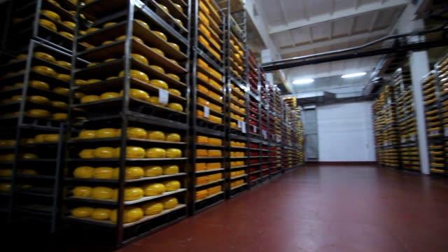süt fabrikası ambar. çelik raflar üzerinde peynir yuvarlar - gıda ve i̇çecek sanayi stok videoları ve detay görüntü çekimi
