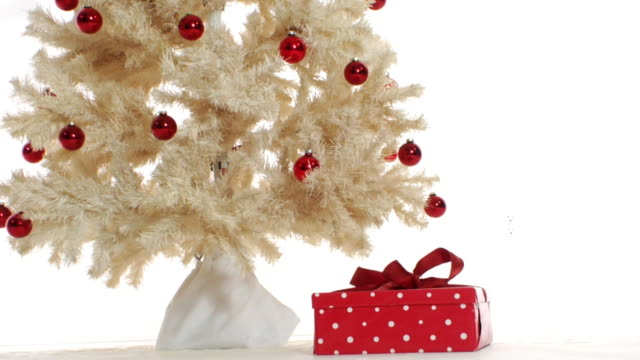 Dancing Gift under the Tree video