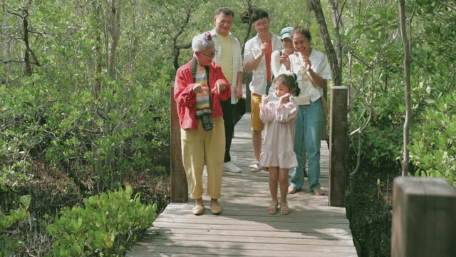Dancing moment, Mother's Day holiday with family-stock video Assertiveness, dancing, teaching, travel, grandmother, grandchild, tourist, eco tourism, environment, fun, summer, family with one child, tree, tree area, mangrove tree baby boomers stock videos & royalty-free footage