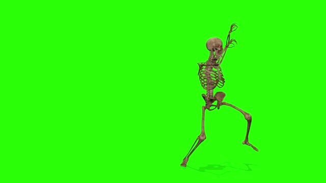 Dancing skeletons on a green screen background. Halloween concept. Dancing skeletons on a green screen background. Halloween concept. ghost stock videos & royalty-free footage