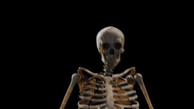 siyah arka plan hd 1920x1080 üzerinde dans üç boyutlu iskelet - i̇nsan i̇skeleti stok videoları ve detay görüntü çekimi