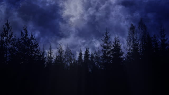 안개 낀 숲 실루엣을 지나가는 짙은 파란색과 회색 폭풍 구름 - 불길한 스톡 비디오 및 b-롤 화면