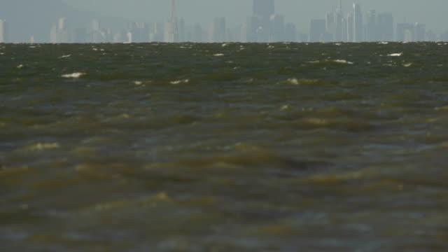 mörk grön krabba sjö med avlägsen stadssilhuetten - vattenbryn bildbanksvideor och videomaterial från bakom kulisserna