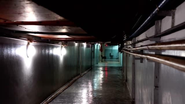 dark hallway light at end highlight silence mysterious basement, dim light - basement stock videos & royalty-free footage