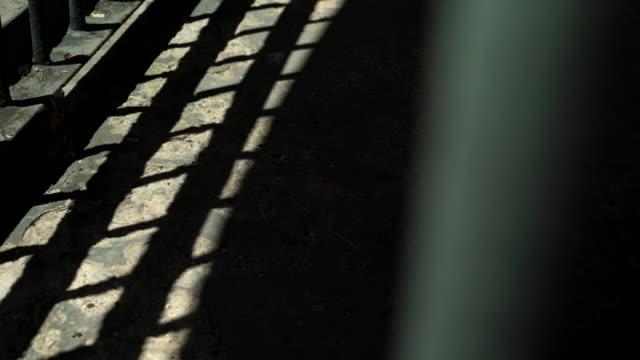 Dark Prison or Jail Cell Camera Panning Through Bars Dark shadows of prison or jail bars casting shadows on dark jail cell floor. prison bars stock videos & royalty-free footage