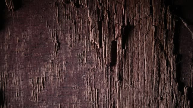 Dark vintage wood texture. Close up view of old grunge dark wooden surface. Selective focus