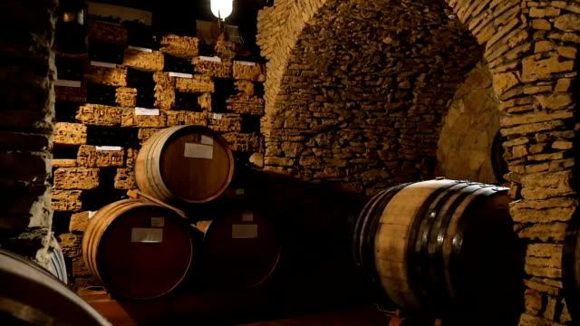 Dark Wine Cellar With Big Wooden Barrels video