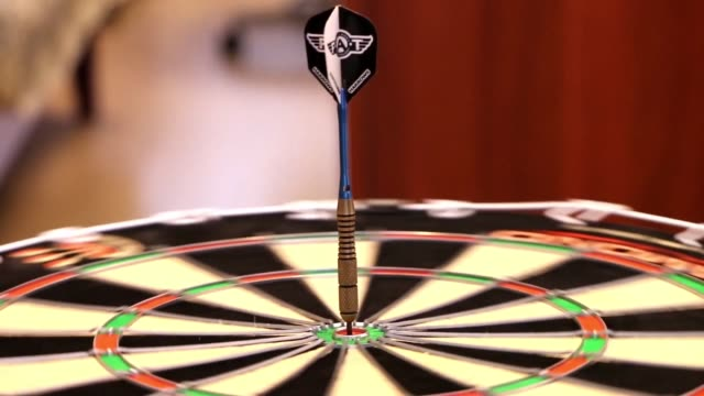 darts target the purpose of the video