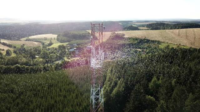lte-data flöde - telecom bildbanksvideor och videomaterial från bakom kulisserna
