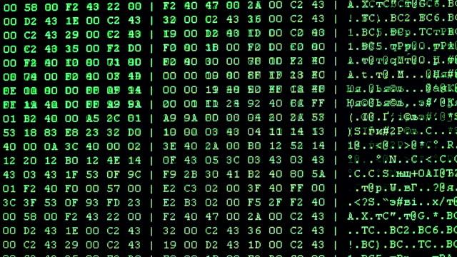 vidéos et rushes de flux de données - codage et codification