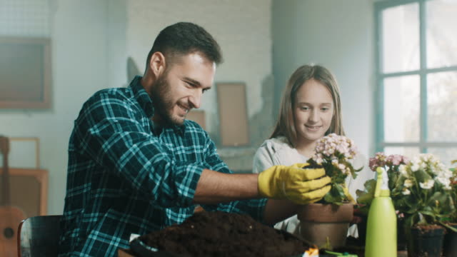 A daughter helping her father planting flowers A daughter helping her father planting flowers in shed hobbies stock videos & royalty-free footage