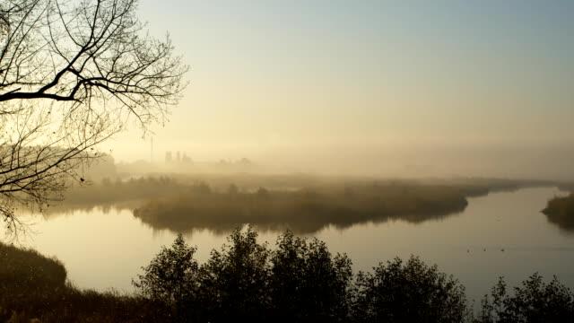 Dawn at a nature reserve (1080p) video