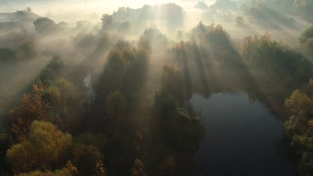 dawn in the morning. aerial drone shot. - landscape video stock e b–roll