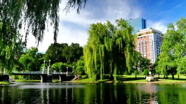 Day Establishing Shot Boston Public Garden video