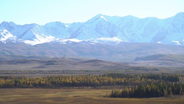 山の日。前景、背景の雪をかぶった山の森 - アルタイ自然保護区点の映像素材/bロール
