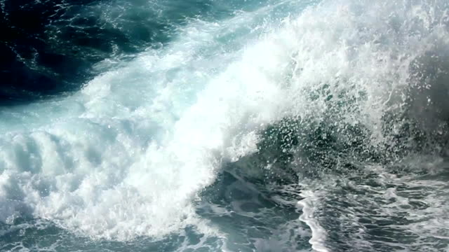 Day of the waves video