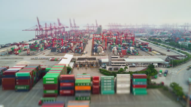 day time shenzhen city famous port aerial panorama 4k tilt shift timelapse china - шэньчжэнь стоковые видео и кадры b-roll
