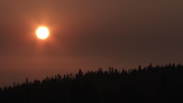 stockvideo's en b-roll-footage met van dag tot nacht rokerige sky time lapse over tree line - ozonlaag