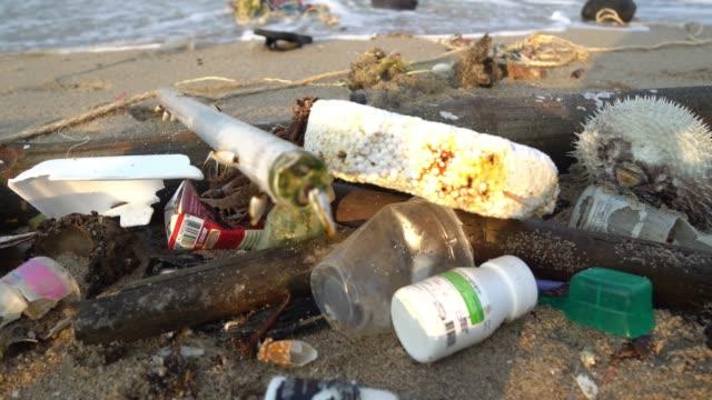 död fisk och plast påse. förorening på stranden av tropiskt hav - utdöd bildbanksvideor och videomaterial från bakom kulisserna