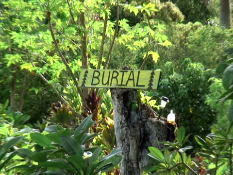 Death: Tropical Cemetery, Slow Poignant Pull video