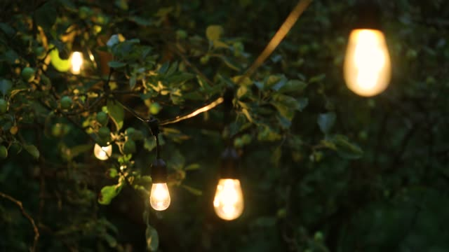 decorative string lights hanging in backyard for outdoor party