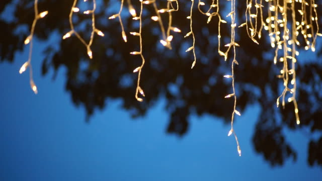 Decorative string lights hanging on the tree. Abstract blurred background. video