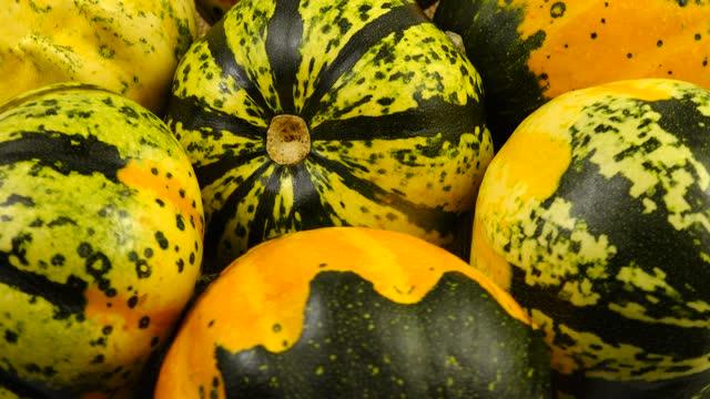 Decorative yellow green pumpkin, background