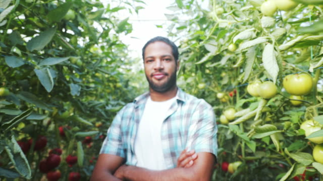 dedicated to organic farming. - gardening video stock e b–roll