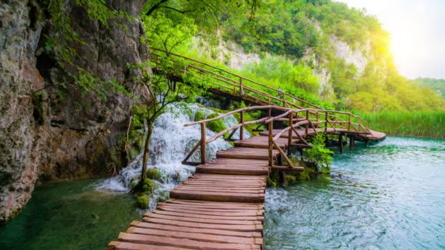 steadycam: deep forest stream with crystal clear water and wooden boardwalk, plitvice lakes, croatia - национальный парк плитвицкие озёра стоковые видео и кадры b-roll