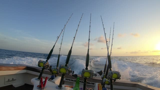 Deep sea sport fishing for Blue Marlin off La Romana Punta Cana Dominican Republic