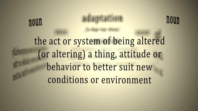Definition: Adaptation video