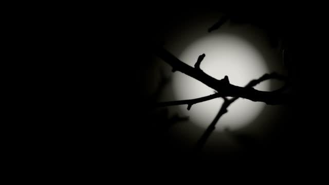 Defocused moon video
