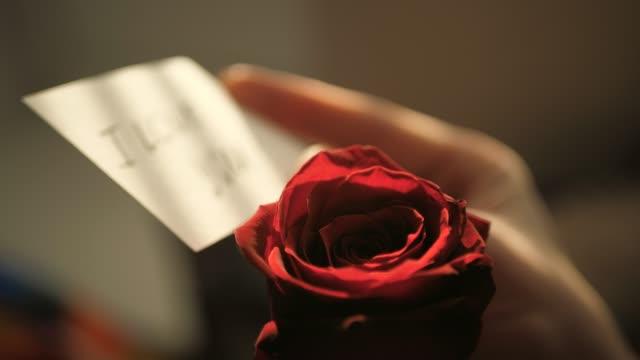 赤いバラの背景に女性の手で日没時にあなたを愛して、焦点を当て解除ノート。バレンタインデー、2月14日、誕生日、記念日、最初の日付のコンセプト。スローモーションとクローズアップ - プレゼント点の映像素材/bロール