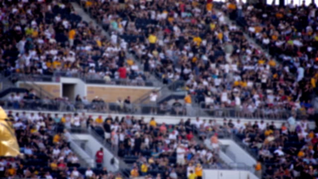 Defocused Stadium Crowd video