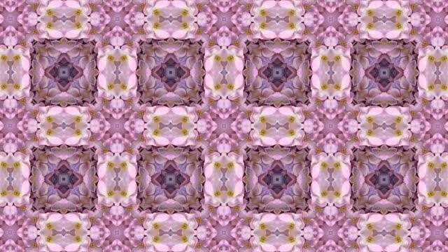 defocused , surreality abstract motion graphics - nerw palca filmów i materiałów b-roll
