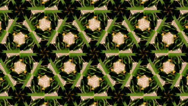 defocused , surreality abstract motion graphics - пальцевой нерв стоковые видео и кадры b-roll