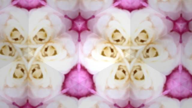 vídeos de stock, filmes e b-roll de gráficos em movimento abstrato desfocados, surrealidades - nervo digital