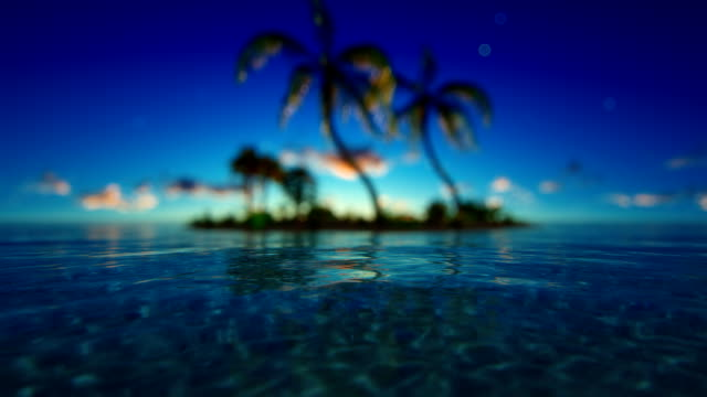 Defocused tropical ocean Tropical island with palm trees in wind. Blue sunset sky with moving clouds. Focus on midground. Computer generated ocean background. shallow stock videos & royalty-free footage