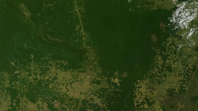 Deforestation Amazon Rainforest Overpopulation video