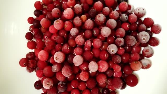 vídeos de stock e filmes b-roll de defrosting of a cranberry. time lapse. - colher atividade agrícola