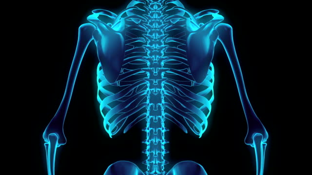 stockvideo's en b-roll-footage met hd: 360 graden x-ray borst skelet. - medische röntgenfoto