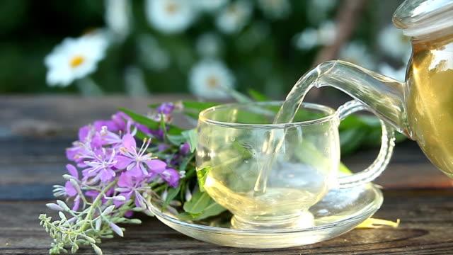 leckeren feuerkraut-tee in einer schönen glasschüssel auf dem tisch - grüner tee stock-videos und b-roll-filmmaterial